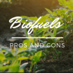 pros and cons of biofuels